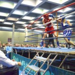 osijek, 29 studeni 2015, 17.45 h, sport, Dvorana Gradski vrt (stolnoteniska dvorana), boks, Osijek boxing open -  snimio zdenko pušiæ ------ 3xcolor sport